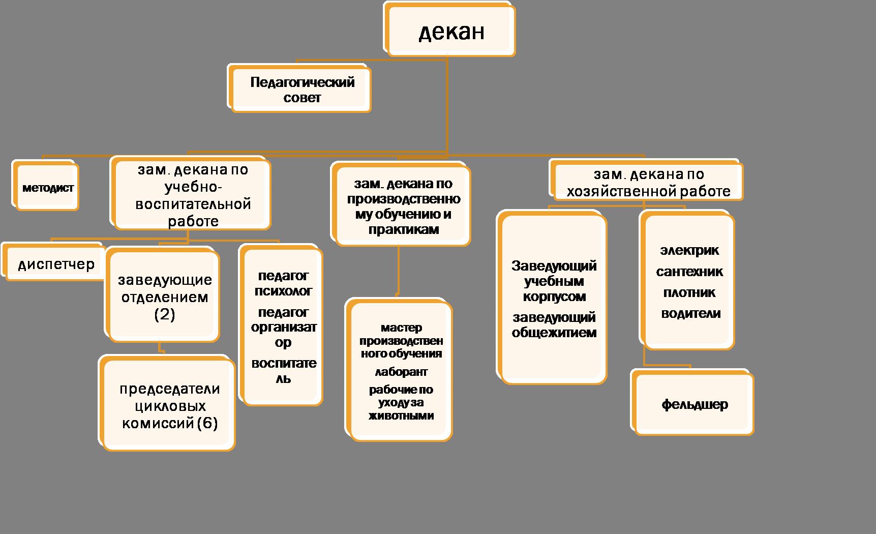 Структура управления факультета СПО
