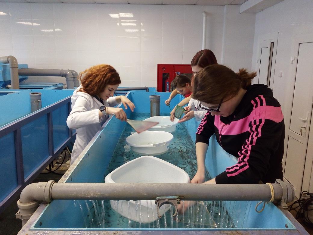 Лаборатория аквакультуры