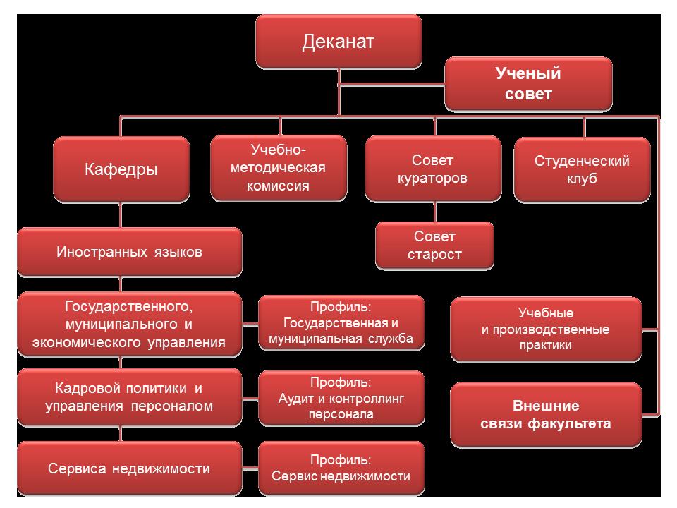 Структура управления факультетом ГМУ
