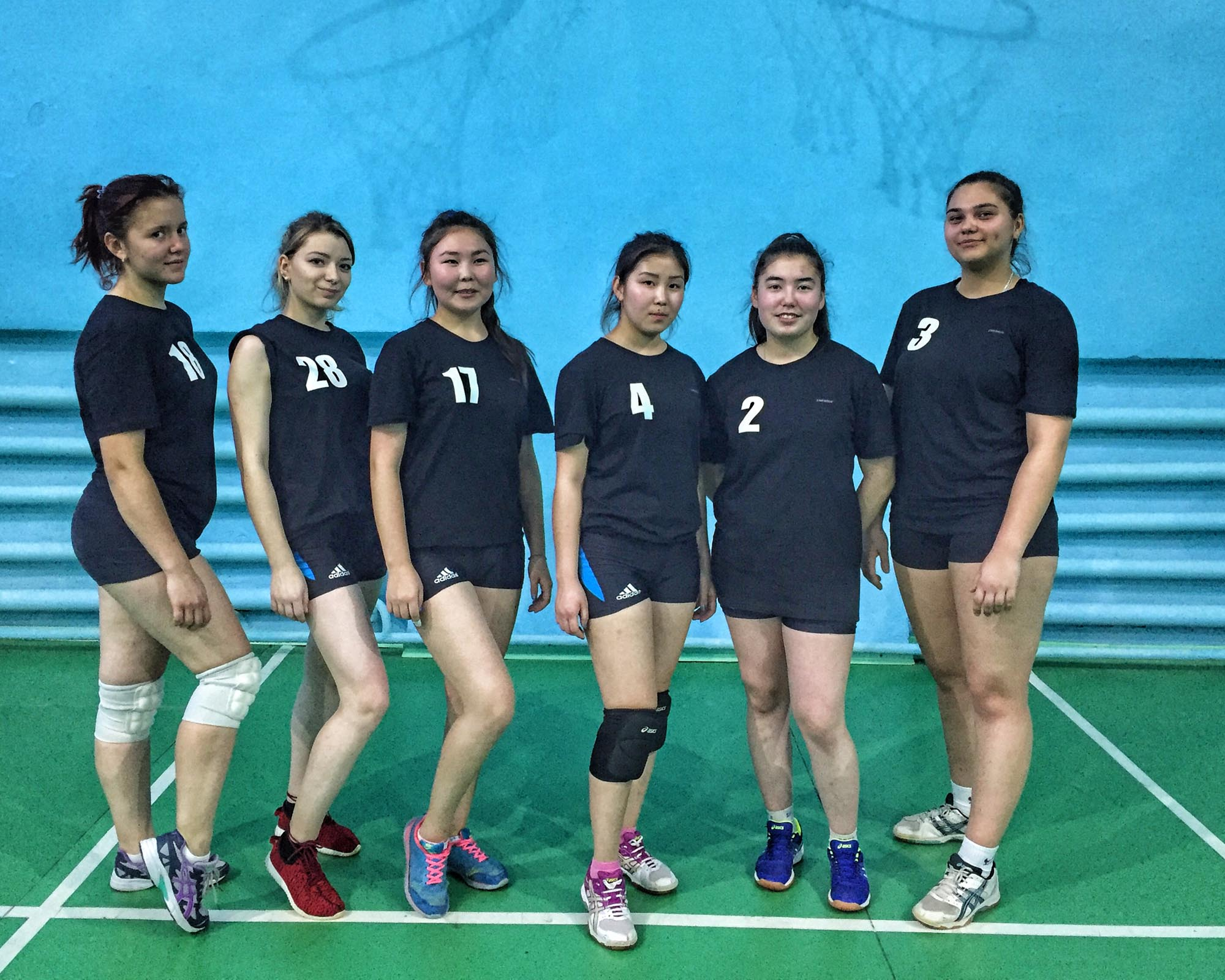 Дружеская встреча по волейболу