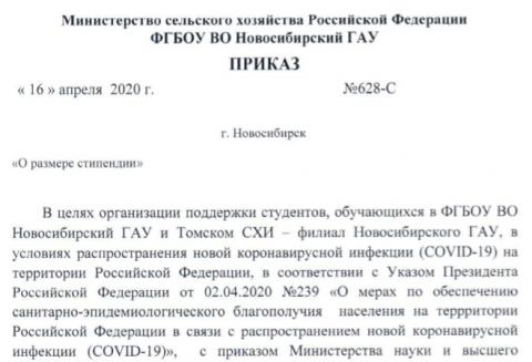 Приказ об увеличении стипендии в Новосибирском ГАУ